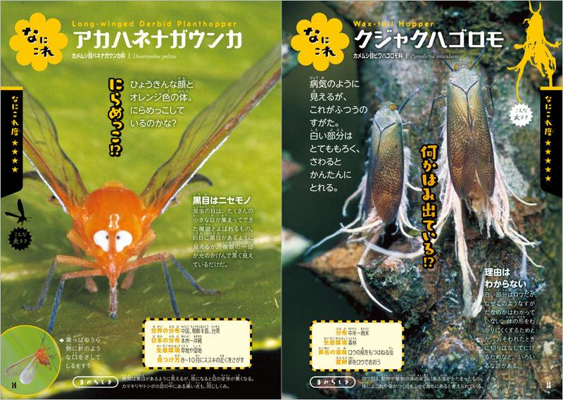 161種のふしぎな昆虫が大集合!
