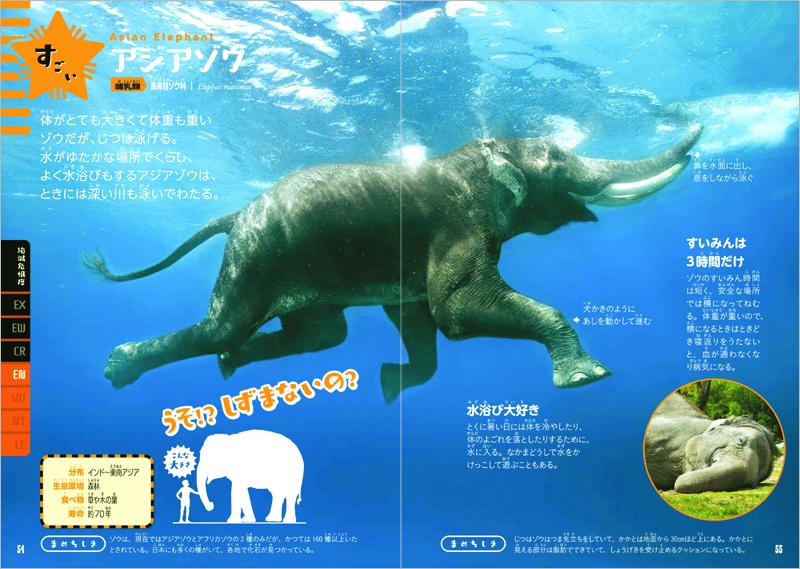 みんなが知っている動物の、意外な情報も紹介!