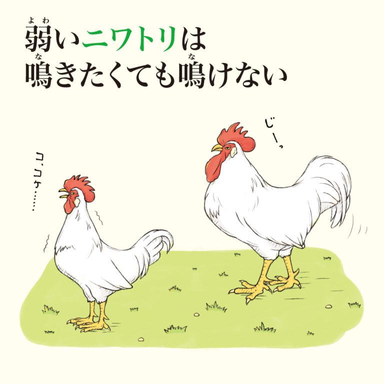 「ざんねんないきもの事典」中身